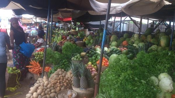 semaine de voyage au sud benin fruit et légume du bénin