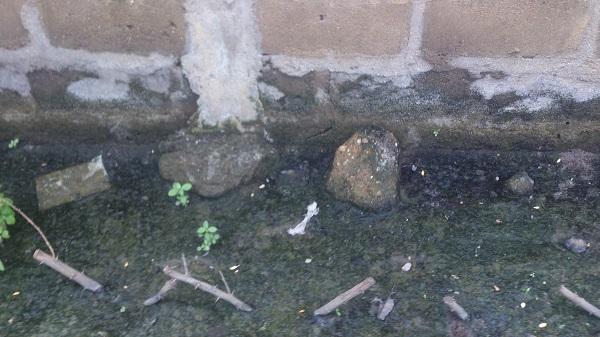 pollution à cotonou ordure ménagère